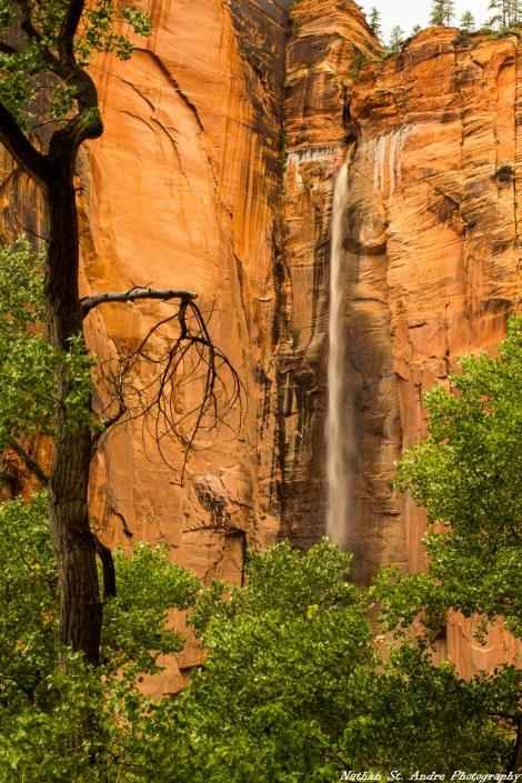 Waterfalls Zion (4 of 7)