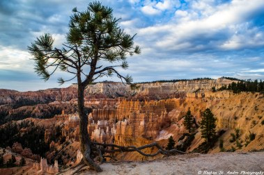 Bryce Canyon (14 of 20)