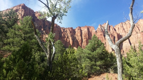 kolob canyon hike