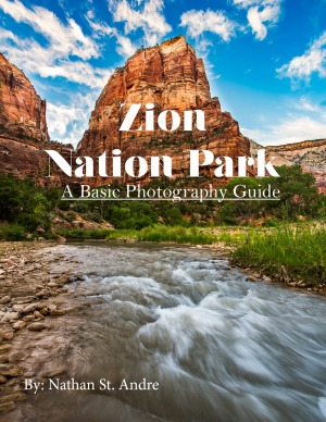 cover-for-zion-guide
